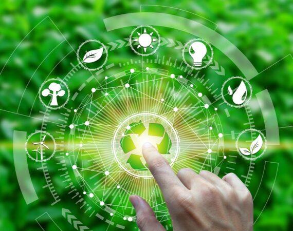 Transizione ecologica ed economia: la grande sfida